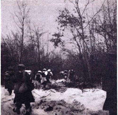 1945 - le 3e BLE dans les bois d'Elsenheim