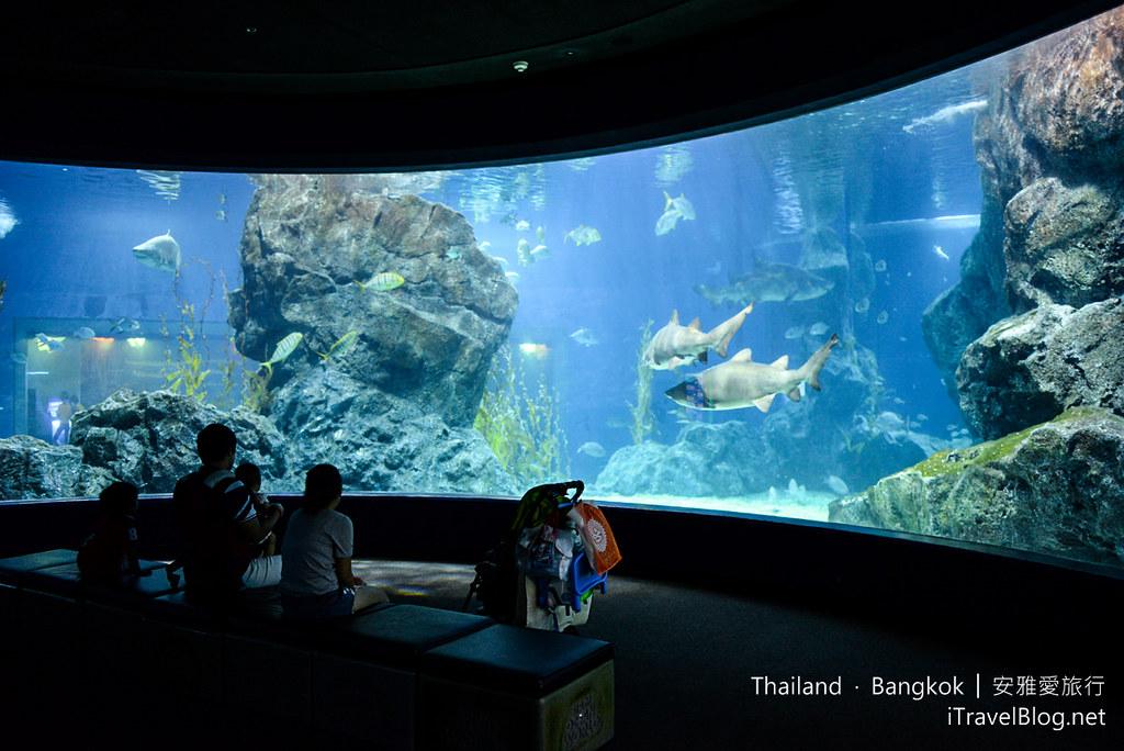 Siam Ocean World Bangkok 51
