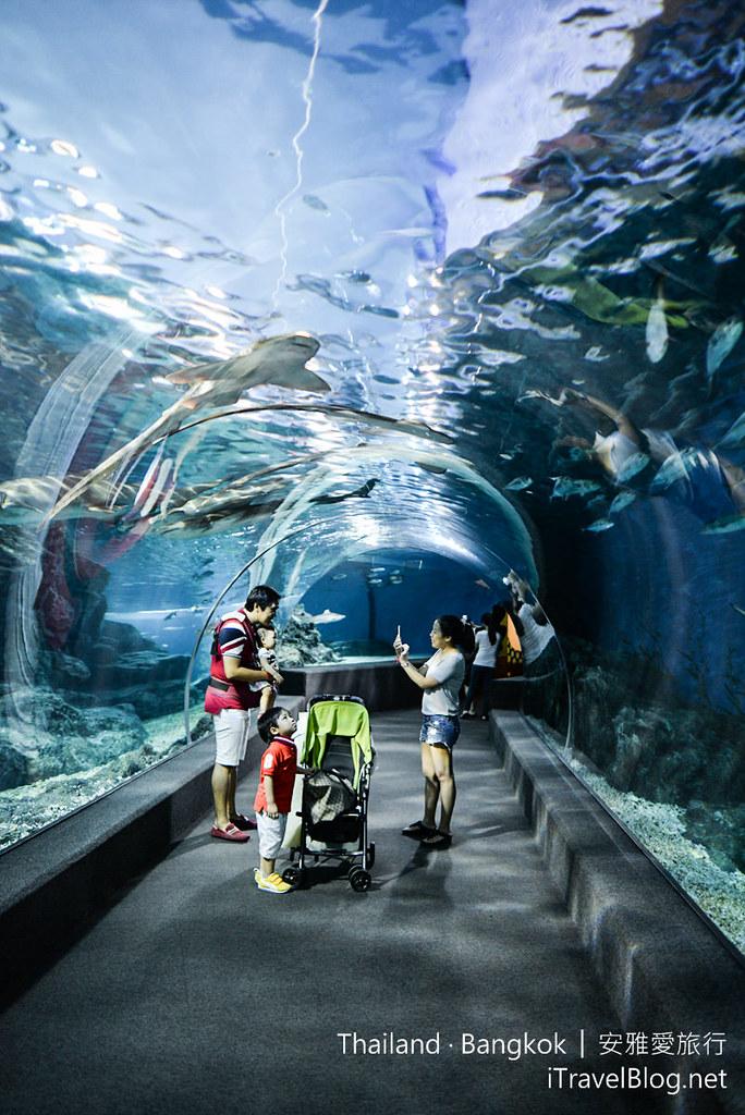 Siam Ocean World Bangkok 50