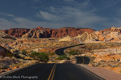 Into the Fire (Valley of Fire, NV) photo by Robin Black Photography