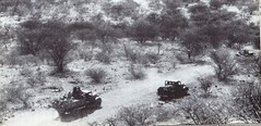 1941- Erythrée-  Convoi dans vallée en erythrée - AFL Ecpa