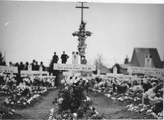 Alsace- 1945- Cimetière d' Obenheim  - ADFL