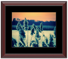 Sunset on the Marsh 2 Framed photo by Melissa Fague - Nature Photographer - Delaware
