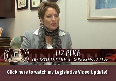Rep. Liz Pike video update
