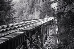 The High Steel Bridge. Olympic Peninsula, WA. photo by thosedarktrees