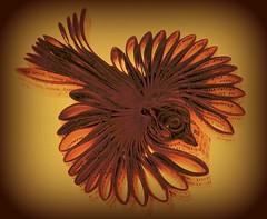 oiseau-livre-papier-03