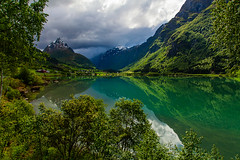 Green Norway photo by Christian Wilt