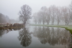 Foggy morning reflections (Explore..21st January 2014) photo by martyndt