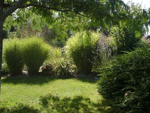 le jardin en septembre 2013 gramin es p pini re ecolo le jardin du prahor. Black Bedroom Furniture Sets. Home Design Ideas