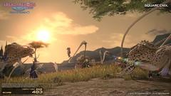 ララフェル戦士謎の垂直ジャンプ