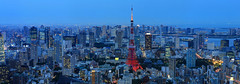 Tokyo Tower and Tokyo Skyline just past sunset photo by jbarry5
