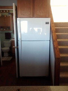 Shiny new fridge