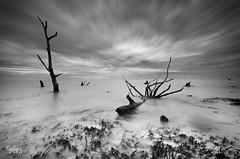 Kelanang's Story - Cloudy Day photo by Syafiqjay