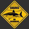 Shark no swimming