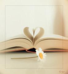 romantic novel photo by t1ggr