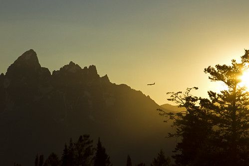 8/4/2014- Flying into Jackson Hole