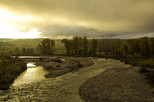 9/22/2014- A misty morning on the Gros Ventre with incredible fall colors.
