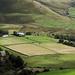 Making hay in Saddleworth