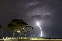 Lightning September 2014 - 2 photo by Doug O'Neill (AUS)
