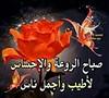 18644068680_750068870e_t