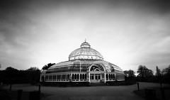 Sefton Park Palm House photo by Mark Holt Photography - 3.5 Million Views (Thanks)