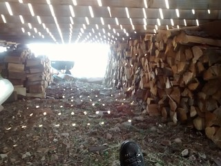 Wood piles are pretty