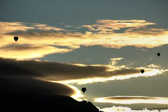 2014 October 9, Albuquerque international balloon fiesta. photo by gardener41
