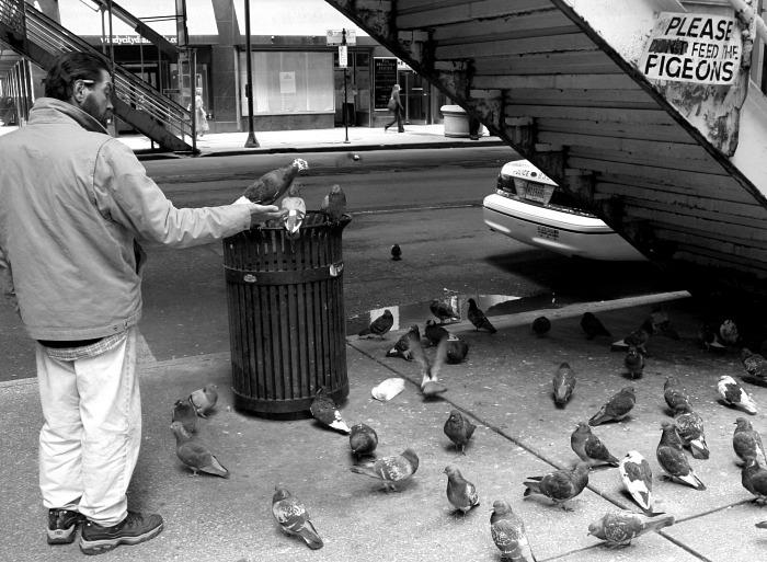 來自 http://inphotos.org/please-dont-feed-the-pigeons/