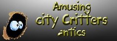 City Critters Limelight