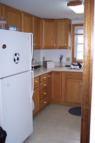 How To Gut A Corner Kitchen Cabinet To Treat Mold Problem?