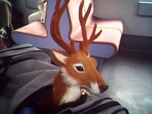Bambi on tour