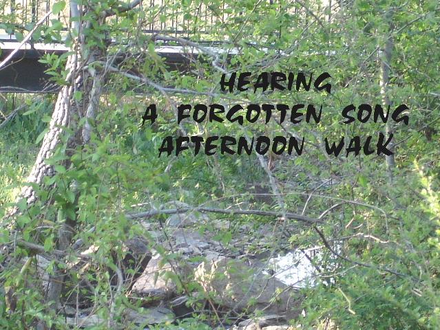 hearing2
