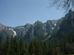 Forest Mountains at Yosemite