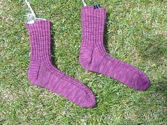 grape waffle socks