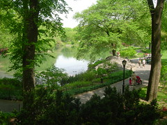 My Favorite Part of Central Park