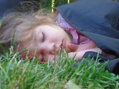 asleeponthelawnmay2006_004