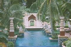Garden Pool 4
