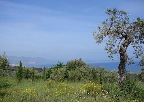 Europe 06 Sicily 506