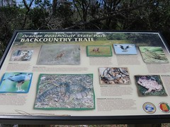 trail fauna