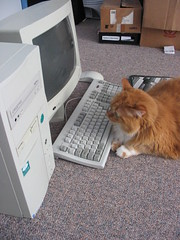 arthur vs. the computer photo by dragfyre