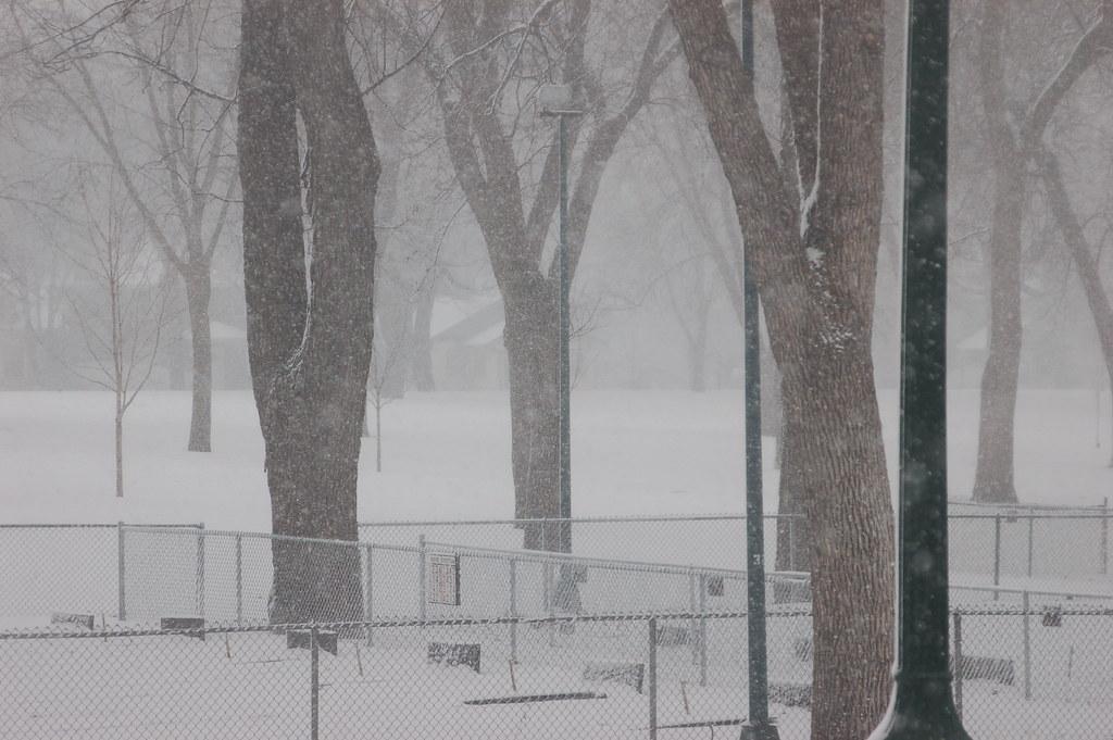 dpring snow 3
