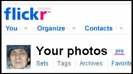 flickr pro account