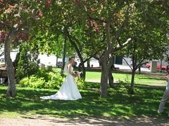 mariage impromptu sous les fleurs