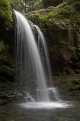 Cove Waterfall