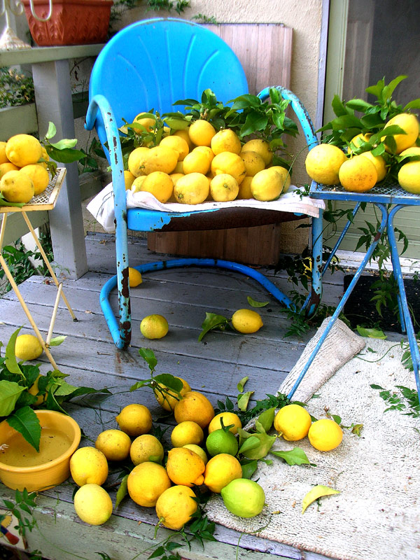 lemon chair