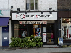 The New Culture Revolution