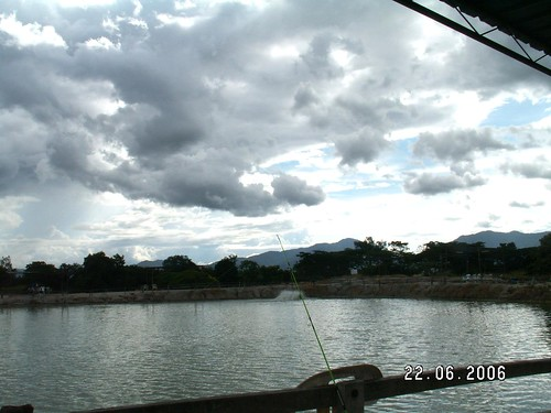 Tg Rambutan Pond 02
