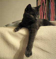 Patsy Posing