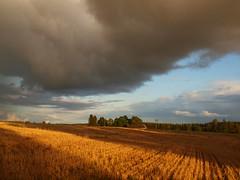 Storm Warning - EXPLORED photo by Axiraa