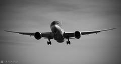 Boeing 787-8 Dreamliner – ArkeFly (TUI Airlines Nederland) – PH-TFK – Brussels Airport (BRU EBBR) – 2014 09 28 – Landing RWY 25L – 03 – Copyright © 2014 Ivan Coninx photo by Ivan Coninx Photography